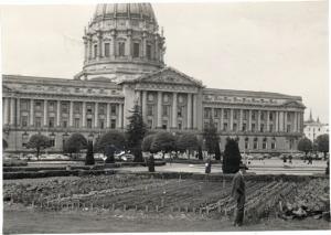 city-hall-garden1