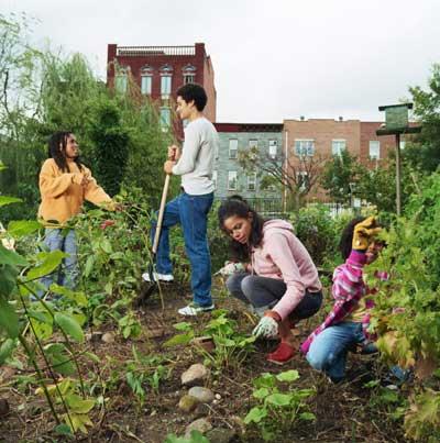 Gardens – Kingston Citizens